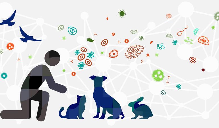 Le mouvement One health pour le rapprochement des médecines humaine, animale et environementale