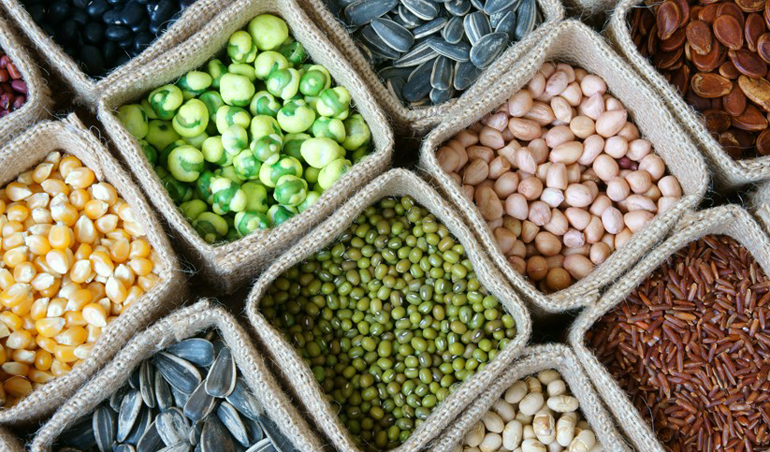 Protéines végétales